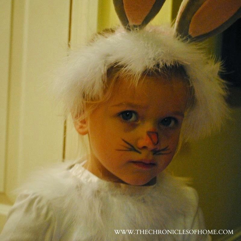Bunny Rabbit Halloween costume