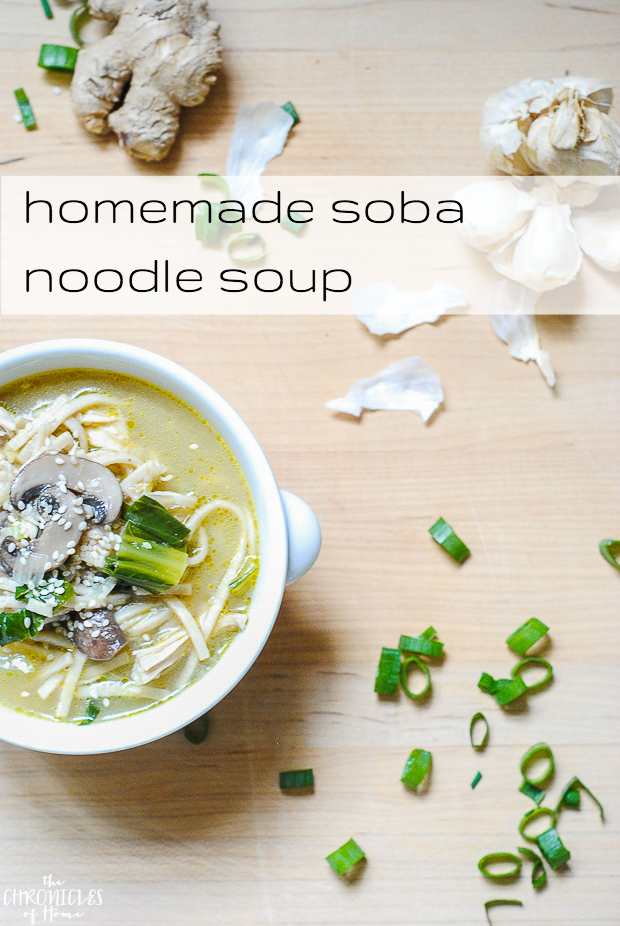 homemade soba noodle soup text